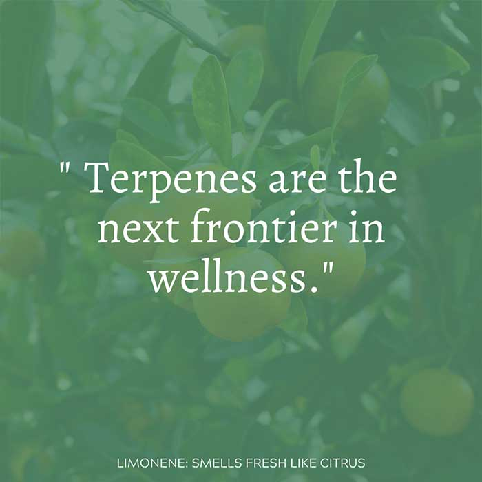 Terpenes are the next frontier in wellness