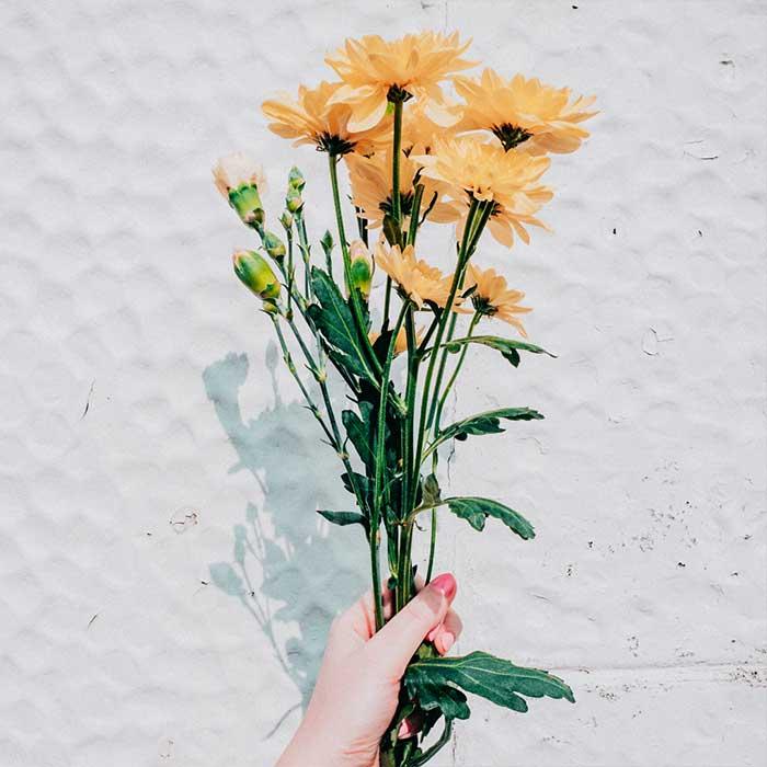 Wildflower Terpenes
