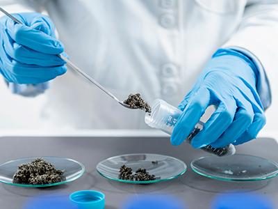 Healthy Roots Hemp Lab Pesticide Testing