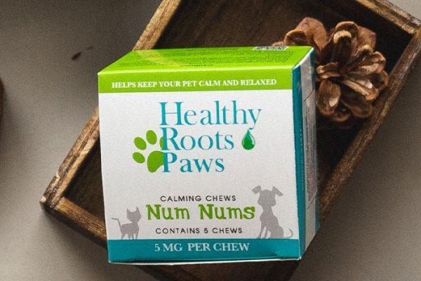Healthy-Roots-Peanut-Butter-Hemp-CBD-Calming-Dog-Treat-Sample-oo0s24awgoylbk1fdp5ccu4s00cty22y9thm1h8yhs.jpg